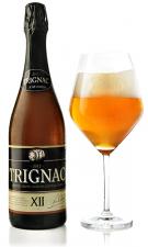 Kasteelbier Trignac 2020 12%  75cl