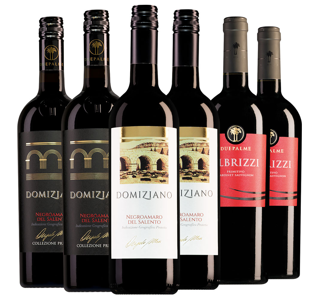 Foodies Wijnpakket Due Palme (3x2 flessen)